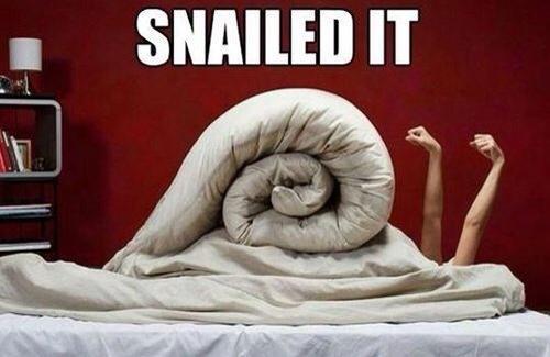 Snailed It